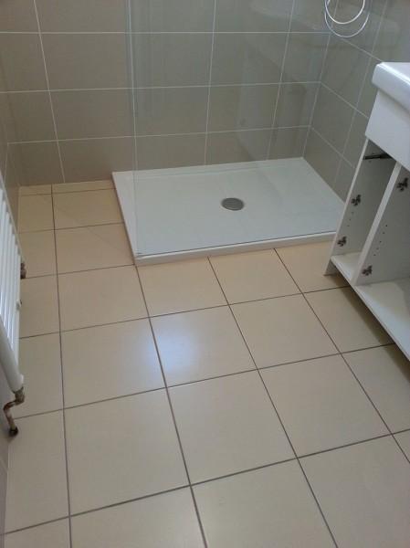Faience_et_sol_dans_une_salle_de_bain_avec_carreaux_decor__2_